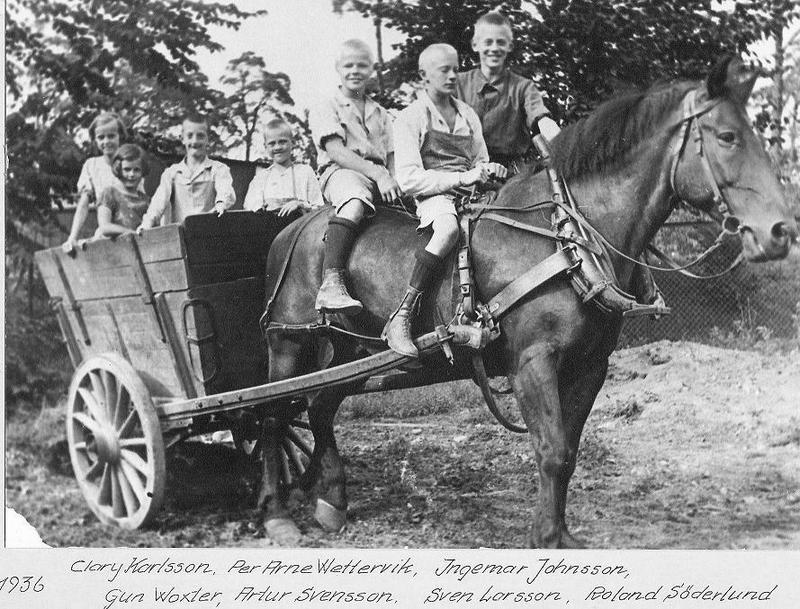 Utflykt med häst och vagn 1936.